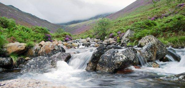 Ennerdale - River Lisa